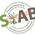 logo SIAB2.png